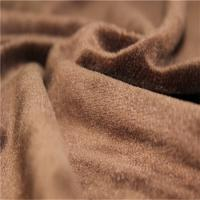 Quality Blanket Micro Velboa Fabric Warp Knitting Velour Terry Cloth Fabric wholesale