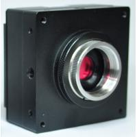 Quality USB2.0 CMOS Colorful / Mono Industrial Digital Camera with Frame Buffer wholesale
