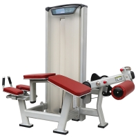 Quality Prone Leg Curl Commercial Gym Equipment Welding Structure Basic Isolation Exercise wholesale