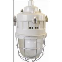 Quality Series of anti-explosion lamps Flame-proof lamp Series BGD52(Maintenance-free energy-saving EDL electrodeless lamp)ⅡC、DIPA20 wholesale