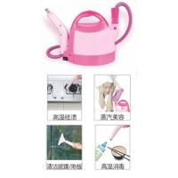China Multi-functional steam cleaner on sale