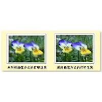 Buy cheap + Digital Image Solutions product