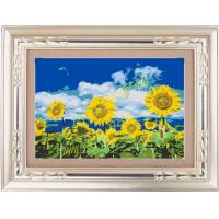 Buy cheap MT34010 Sunflowder from wholesalers