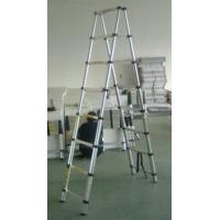 Telescopic Ladder Wt-2.3+2.3m