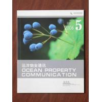 Ocean Property Communication, May, 2006