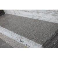 Quality G664 Granite G664 Counter top tile wholesale
