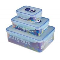 Quality NR-4179 vacuum food container wholesale