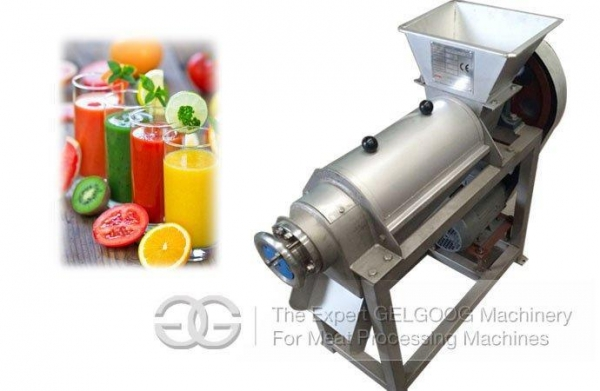 Cheap Stainless Steel Fruit and Vegetable Juice Extractor for sale