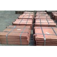 Primary Copper Cathodes