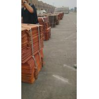 Quality Electrolytic copper wholesale