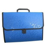Quality Expanding file With Embossed Opaque Matte wholesale