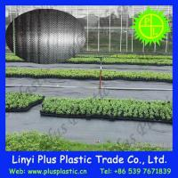 Quality Grass Cloth Agricultural Ground Cover wholesale