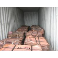 Quality Copper cathode wholesale