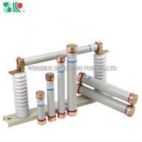 Quality ceramic or glass fuse CE Current-Limiting High Voltage Tube Ceramic Fuse wholesale