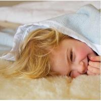 Buy cheap MERINO WOOL COT UNDERBLANKET from wholesalers