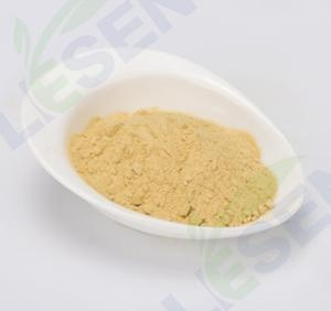 China Fruit AND Vegetable Product Pumpkin Powder