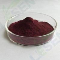 Cheap Plant Extract Acai Berry Extract for sale