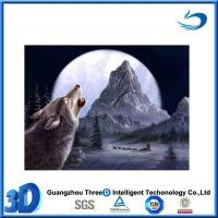 China Wolf Stocked images 3d animation picture of wolf family on sale