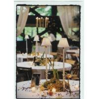 Buy cheap Table Lighting Rental Lamps product