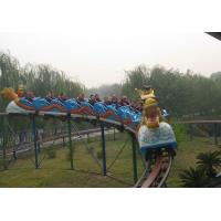 Quality Outdoor playground sliding dragon roller coaster rides hot sale wholesale