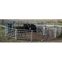Quality heavy duty hot dipped galvanized cattle yard panel/livestock fence/cattle fence/cattle panel wholesale