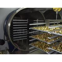 China FD-200 Freeze Dryer | Freeze Drying Equipment Low Prices on sale