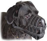Buy cheap Cane Corso Light Weight Super Ventilation muzzle product