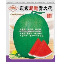 China Watermelon seed---Green Resistance on sale