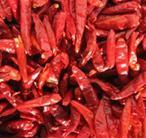 Buy cheap Hot Chili from wholesalers