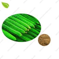China Cucumber Extract on sale