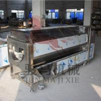 Quality Amphisarca cleaning and peeling machine with brush wholesale