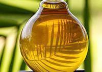 Quality CRUDE PALM OIL wholesale