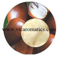 Quality Shea Butter Oil wholesale