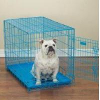 Quality Proselect Fold Down Crate wholesale