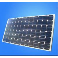 Quality Hot sale 250W 1000V Polycrystalline Solar Powered Panel with 36 Cells Solar Charger wholesale