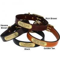 Quality English Bridle Leather Dog Collar with Personalized Nameplate wholesale