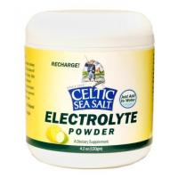 Quality RECHARGE with Celtic Sea Salt Brand Electrolyte Powder! wholesale