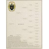 Quality Customized 5-Generation Picture of a Family Tree with Coat of Arms & Surname Origin wholesale