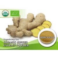 China Organic Ginger extract powder on sale