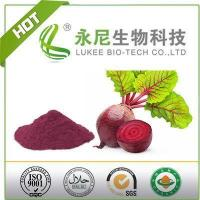 Quality Red Beet Root Powder Food Grade for Functional Products wholesale
