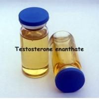 Quality Injectable Semi-Finished Oil Testosterone Enanthate 300mg/Ml wholesale