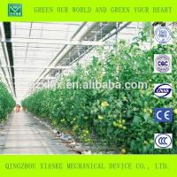 Quality Mini Cheap Aluminium Agricultural Greenhouse wholesale