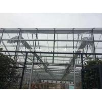 Quality Venlo glass agricultural green house wholesale