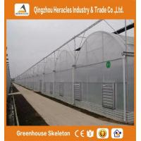 Quality Heracles Multi span low cost agricultural greenhouse wholesale