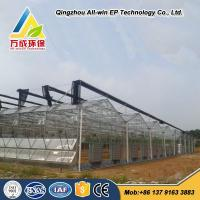 Quality Low cost hydroponics agricultural commercial glass greenhouse for vegetable wholesale
