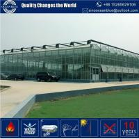 Quality Commercial Industrial Agriculture multi span greenhouse wholesale