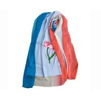 Quality Summer Silk Georgette Gradient Ramp Shawl and Red Neck Scarves with Embroidery wholesale