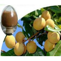 Dried Longan Pulp Extract