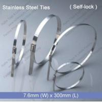 Cheap E1275 Stainless Steel Tie (7.6mm x 300mm) for sale