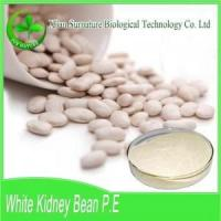 Quality Weight Loss WhiteKidneyBeanExtract wholesale